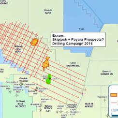 Payara Prospect Project